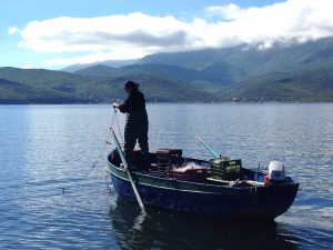 Lake Prespa Fisherman